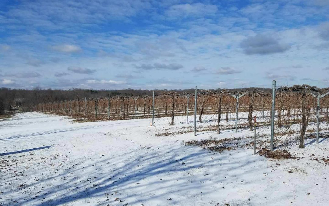 5 Reasons to Visit the Shawnee Hills Wine Trail this Winter