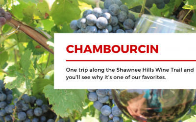 Chambourcin:  A Shawnee Hills Favorite